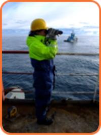 Marine-Mammal-Observer-Services