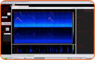 Passive-Acoustic-Monitoring-Services