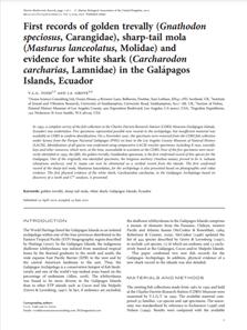 First records of golden trevally (Gnathodon speciosus, Carangidae), sharp-tail mola (Masturus lanceolatus, Molidae) and evidence for white shark (Carcharodon carcharias, Lamnidae) in the Galápagos islands, Ecuador (PDF)